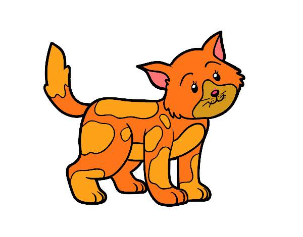 Coloring page Stray cat painted bylibbi