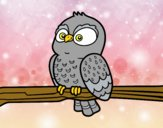 Coloring page Owl on a branch painted byalexadra