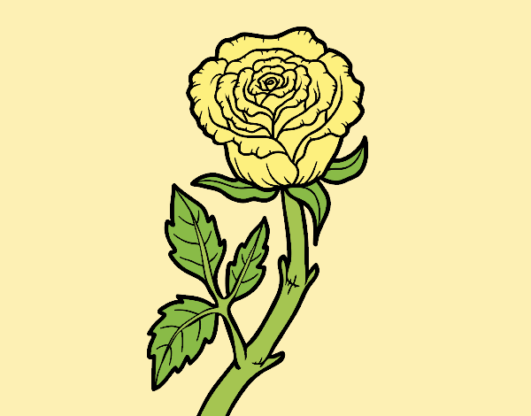 Coloring page Wild rose painted byLornaAnia