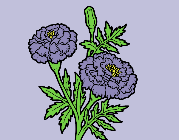 Coloring page Wonder flower painted byLornaAnia