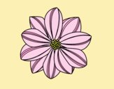 Coloring page Daisy flower painted byLornaAnia