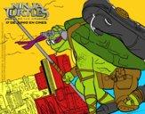 Donatello Ninja Turtles