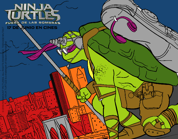 Donatello Ninja Turtles