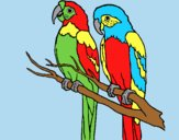 Coloring page Parrots painted byLornaAnia