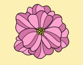Coloring page Pansy painted byLornaAnia