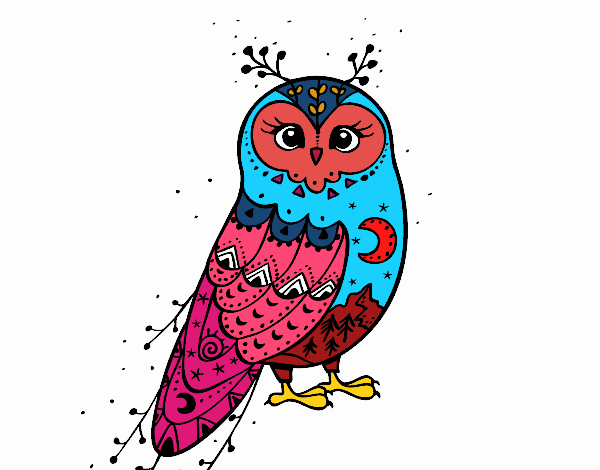 Winter Barn owl