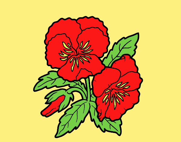 Thought flower