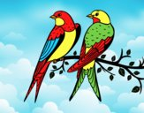 Coloring page Pair of birds painted byLornaAnia