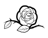 Dibujo de A beautiful rose