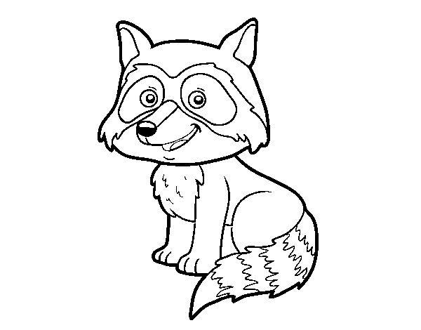 A young raccoon coloring page
