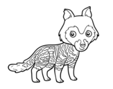 African civet coloring page