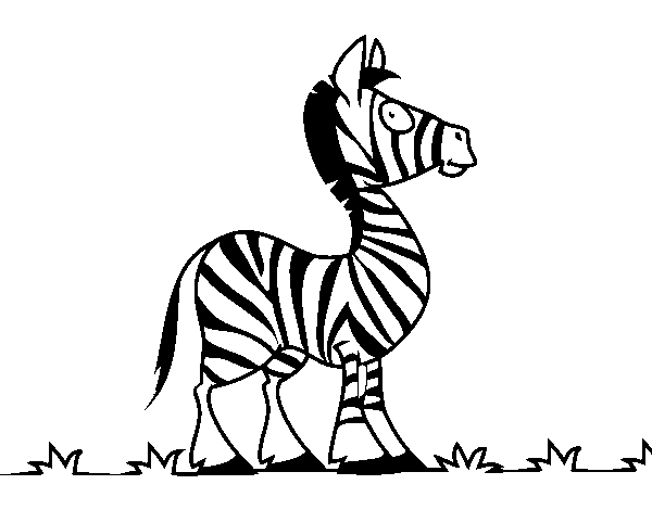 African zebra coloring page