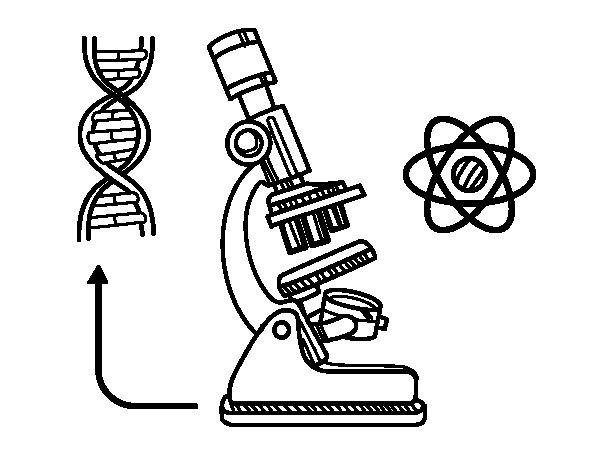Biology coloring page - Coloringcrew.com