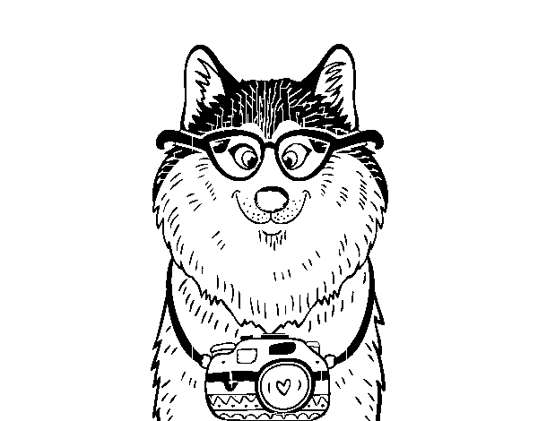Dog photographer coloring page