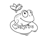 Frog and water lily coloring page