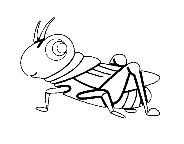 Fun Grasshopper coloring page