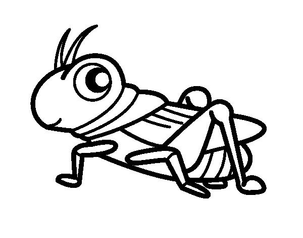 Fun Grasshopper coloring page - Coloringcrew.com