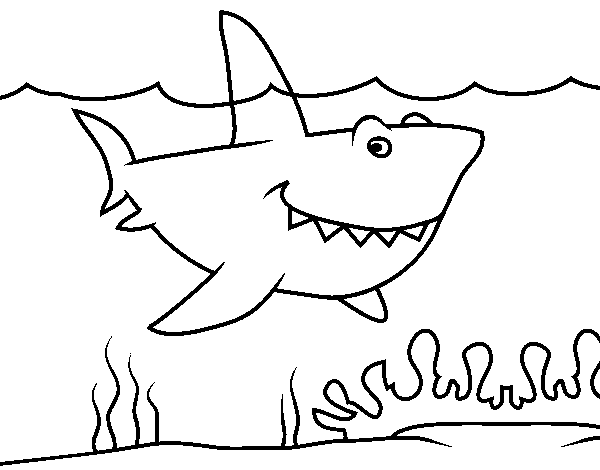 Marine shark coloring page