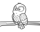 Owl on a branch coloring page