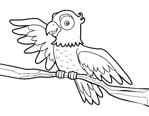 Parrot in freedom coloring page