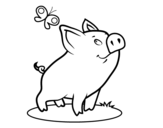 Piggy and butterfly coloring page