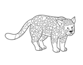 The cheetah coloring page