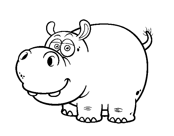 The hippopotamus coloring page