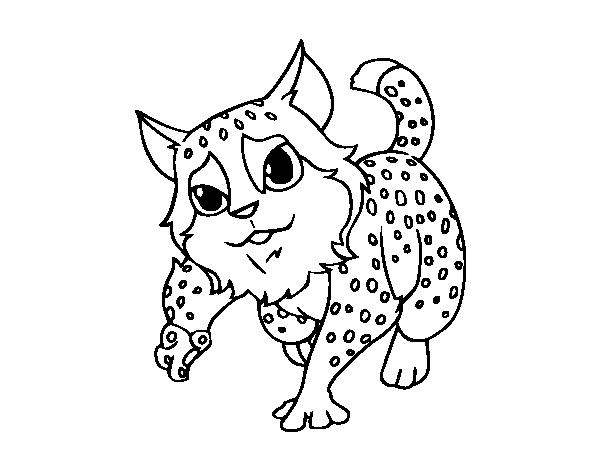 Wildcat coloring page - Coloringcrew.com