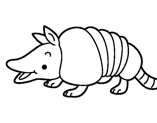 Young armadillo coloring page - Coloringcrew.com