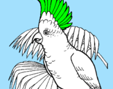 Coloring page Cockatoo painted byL.G