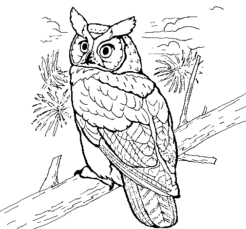 Coloring page Great horned owl painted byvegess