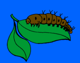 Coloring page Caterpillar on leaf painted byivo