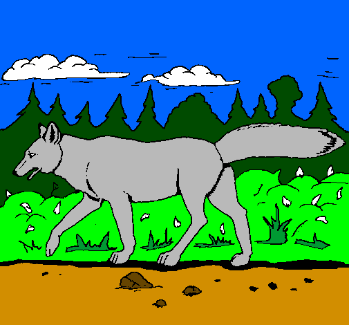 Coloring page Coyote painted byana luiza