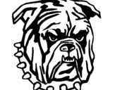 Coloring page Bulldog painted byMadison