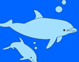 Coloring page Dolphins painted byjamie