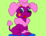 Coloring page Poodle painted bychloe
