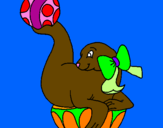 Coloring page Seal playing ball painted byRutuja