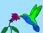Coloring page Hummingbird and flower painted byJess