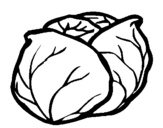 Coloring page cabbage painted bybrenda