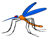 Coloring page Mosquito painted bybrandon cress