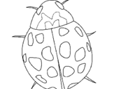 Coloring page Ladybird painted byyani