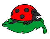 Coloring page Ladybird on a leaf painted byariana