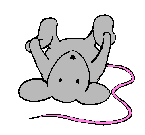 Coloring page Rat lying down painted byplaying mouse