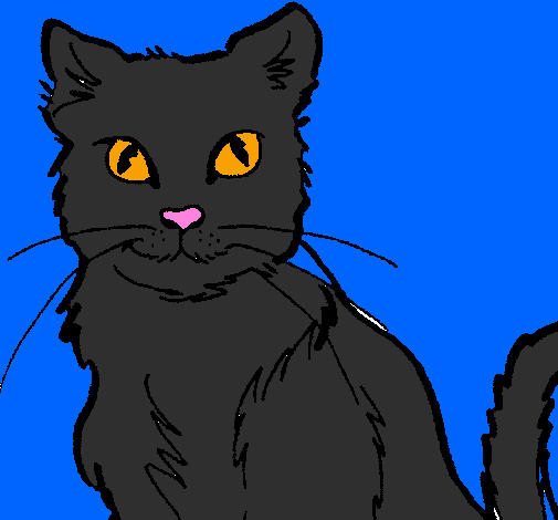 Coloring page Cat painted bysarah