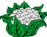 Coloring page cauliflower painted byemily