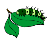 Coloring page Caterpillar on leaf painted byelian