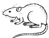 Coloring page Underground rat painted byunder ground logo