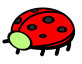 Coloring page Ladybird painted bybuddy bear