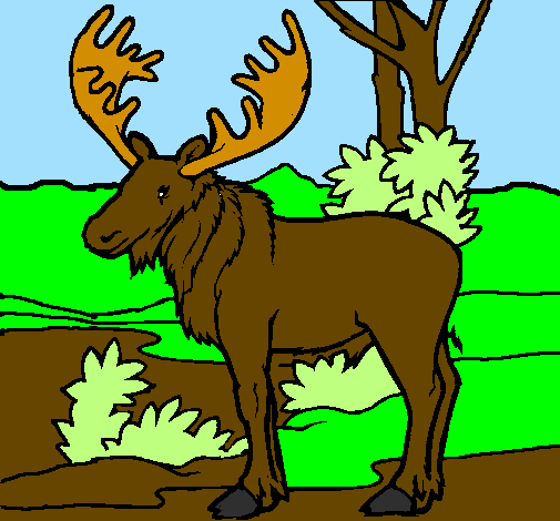 Coloring page Moose painted byhaleigh