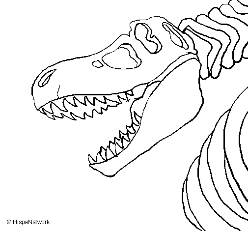 Colored Page Tyrannosaurus Rex Skeleton Painted By Anonymous